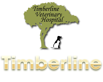 Timberline Veterinary Hospital